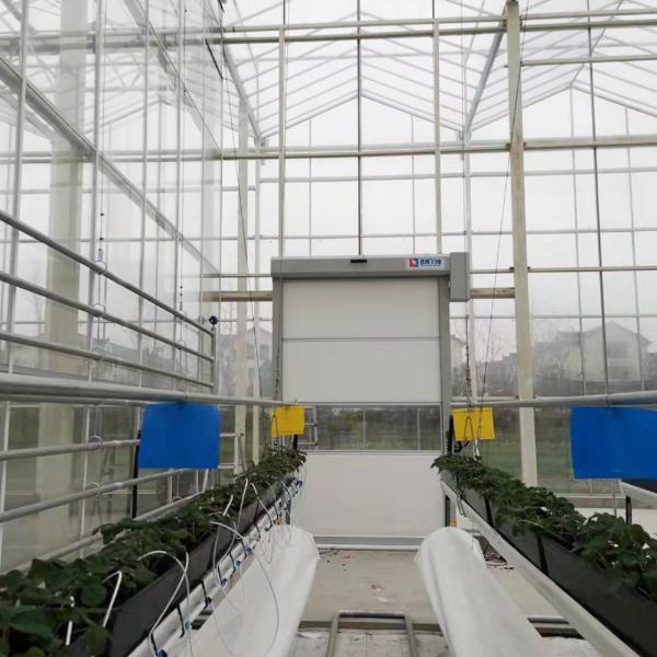 上海蔬菜植物培育大棚智能快速卷帘门